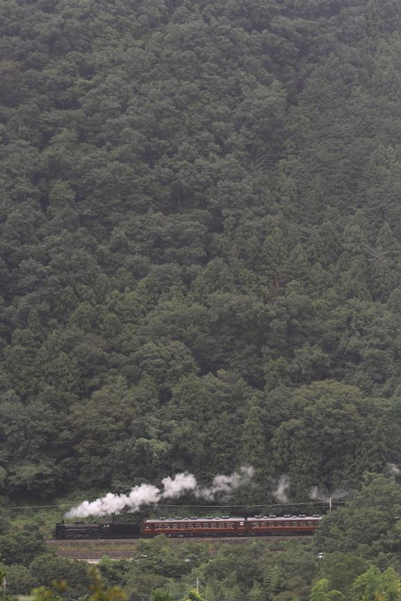 濃緑の山に白煙 - 2017年初秋・秩父 -_b0190710_17402739.jpg