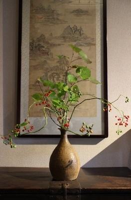 花だより ヤマホロシの実とマルバの葉_a0279848_16362434.jpg