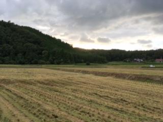稲刈りと台風_f0071456_1630518.jpg