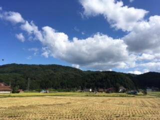 稲刈りと台風_f0071456_1630584.jpg