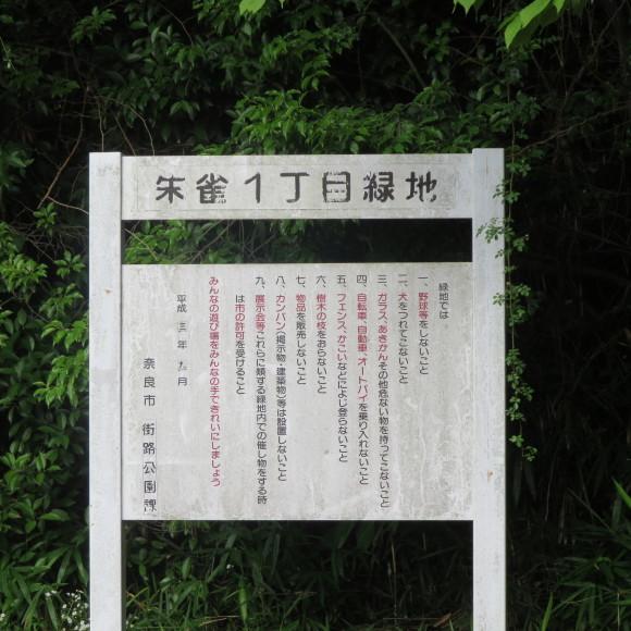 歌姫のかたきを興福院でとる 奈良 △´_c0001670_13553489.jpg
