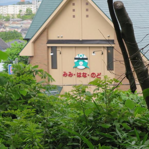 歌姫のかたきを興福院でとる 奈良 △´_c0001670_13594989.jpg