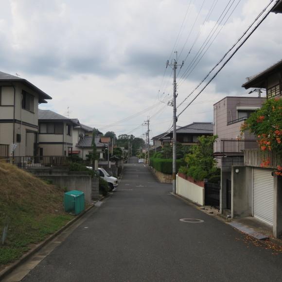 歌姫のかたきを興福院でとる 奈良 △´_c0001670_14024967.jpg
