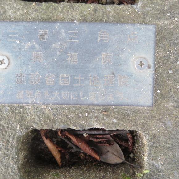 歌姫のかたきを興福院でとる 奈良 △´_c0001670_14113120.jpg