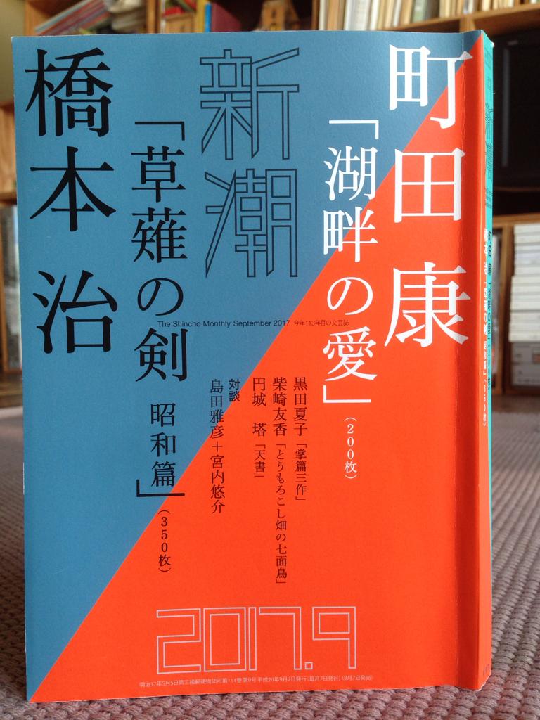 『湖畔の愛』町田康著_e0055098_16392873.jpg