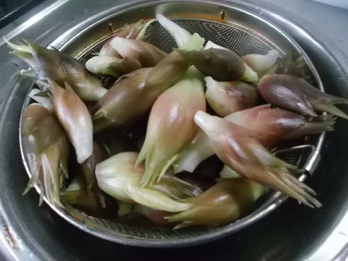 じいちゃんの料理 みょうがの天ぷら&たらこスパゲティ_f0019498_10141371.jpg