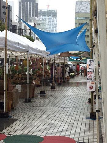 雨の日の青山ファーマーズマーケット_d0329740_23554754.jpg
