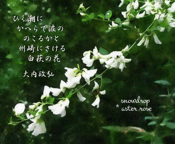 萩の花とおはぎ * Japanese clover (hagi) and o-hagi_f0374041_21161759.jpg