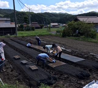 稲刈りと台風_f0071456_22145463.jpg