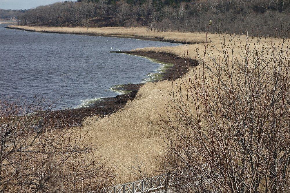 風蓮湖(ふうれんこ)_c0112559_08102035.jpg