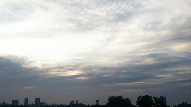 クジラ降る夜のこと(台風通過中の夜中...ふと思いだしたこと)_d0244370_05452398.jpg