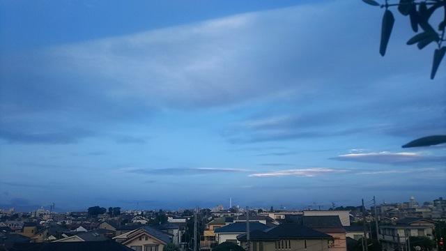 クジラ降る夜のこと(台風通過中の夜中...ふと思いだしたこと)_d0244370_05452972.jpg