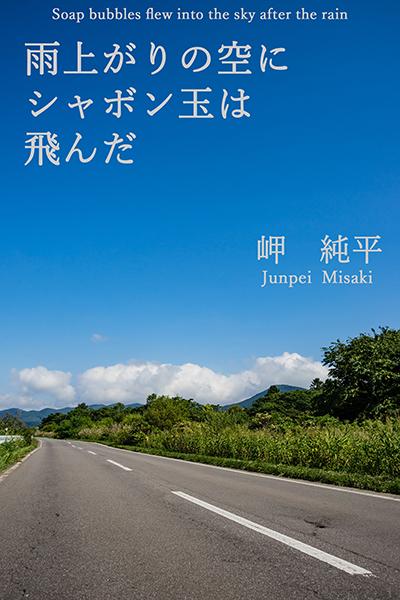 【Kindle本】新刊出版しました_e0338273_19265900.jpg