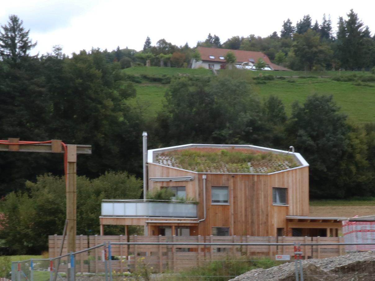 東スイス・西オーストリア研修1:ツォフィンゲンの家_e0054299_11385215.jpg