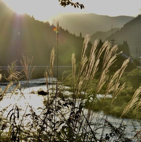 秋が来た...02_f0099102_11582246.jpg