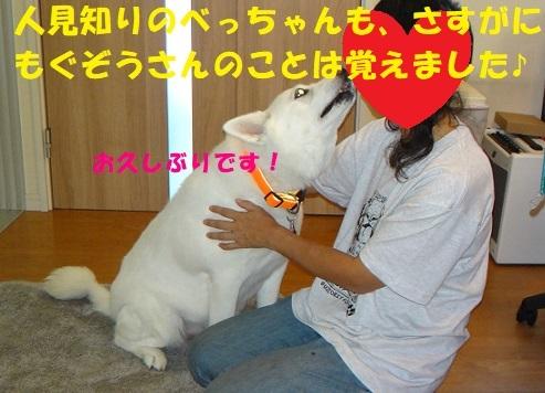 f0121712_08202036.jpg