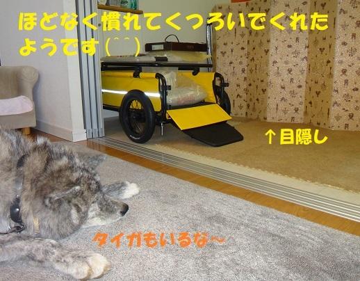 f0121712_08314569.jpg