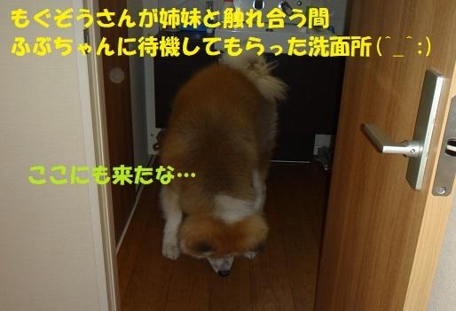 f0121712_08444319.jpg