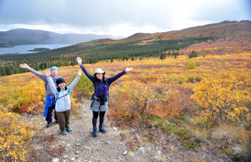 極北の秋 ツンドラ紅葉 フィッシュ レイク ハイキング_d0112928_08110922.jpg