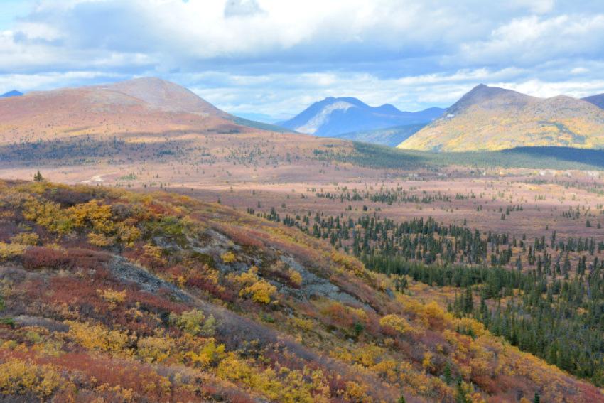 極北の秋 ツンドラ紅葉 フィッシュ レイク ハイキング_d0112928_08143624.jpg
