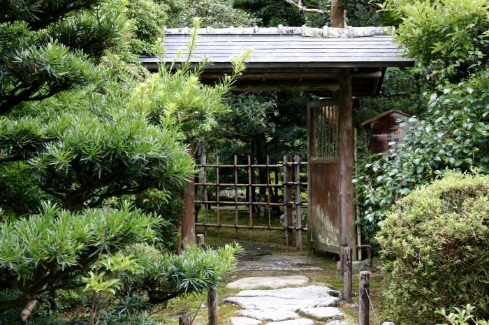 【旧竹林院/庭園】夏の帰省 - 19 -_f0348831_22332440.jpg