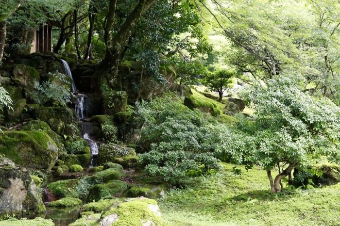 【旧竹林院/庭園】夏の帰省 - 19 -_f0348831_22334445.jpg