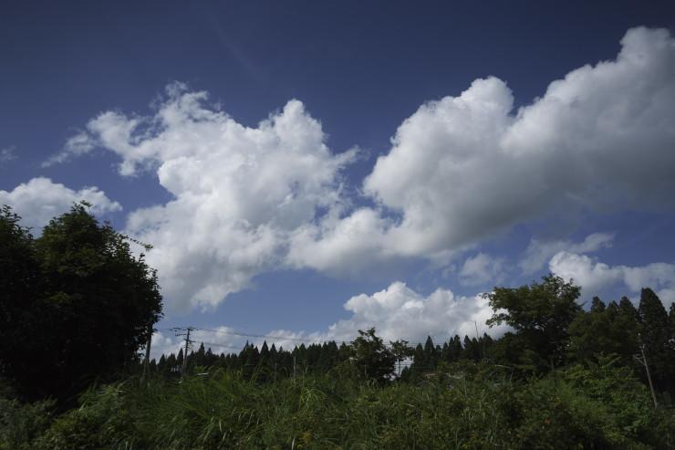 e0342136_20092001.jpg