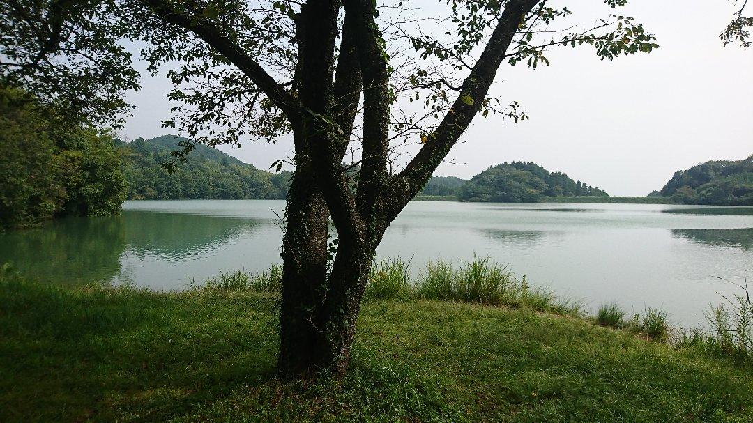 浮羽 カフェ&バル 溜から~ibiza~~greengreenvillage日田まで。_a0125419_05355172.jpg