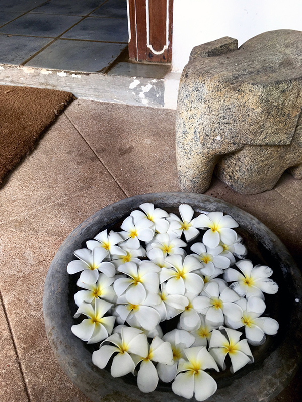 スリランカ旅行ホテル3_b0038919_11454614.jpg