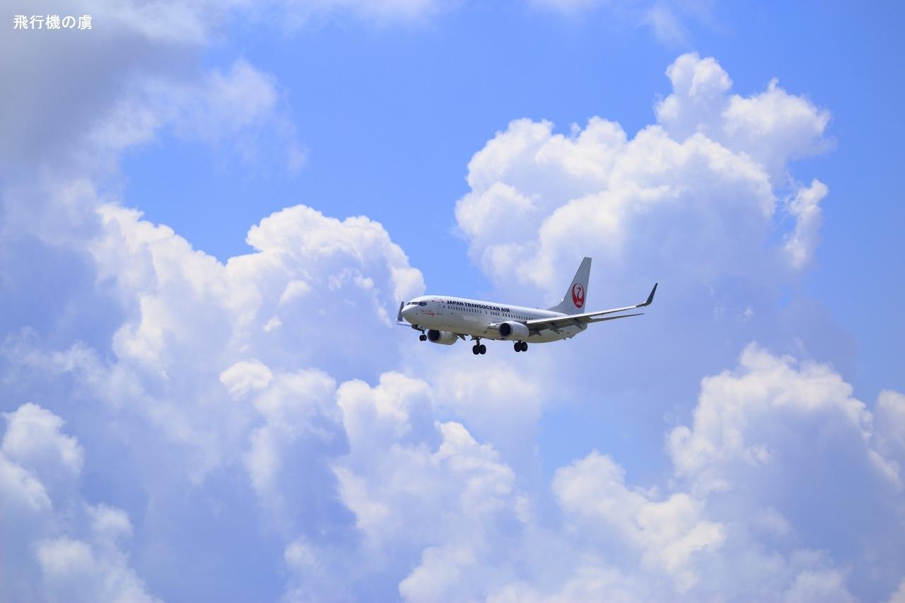 晩夏の雲と  B737  日本トランスオーシャン航空(NU)_b0313338_23345594.jpg