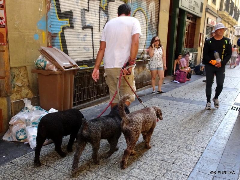 美食の街 サン・セバスティアンを歩く_a0092659_18265707.jpg