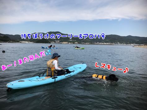 c0343364_16023513.jpg