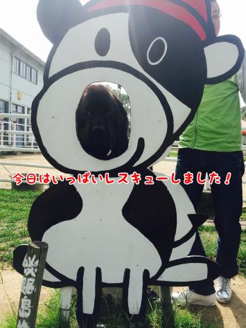 c0343364_16201884.jpg