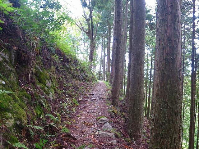 熊野古道・中辺路 箸折峠~近露王子へ_b0326483_20362958.jpg