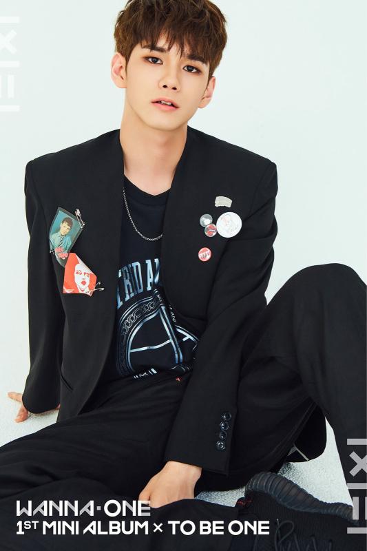 Wanna One勉強中 _f0378683_21181224.jpg
