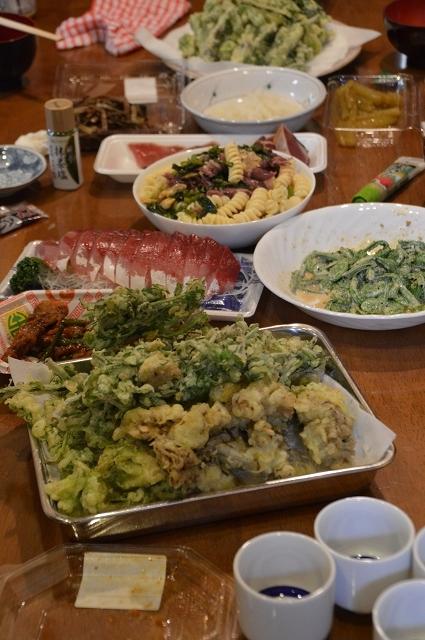 2017.05 快晴の中、山菜採り_c0124100_14534742.jpg