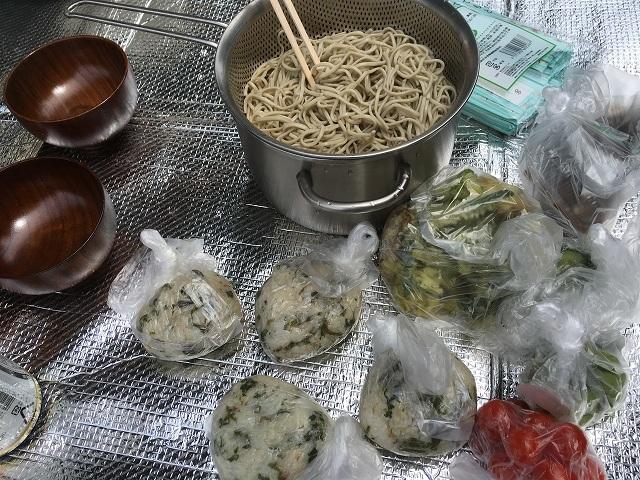 2017.05 快晴の中、山菜採り_c0124100_14540795.jpg