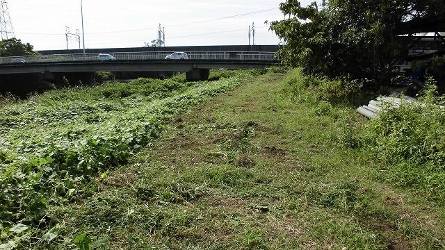 滝川の彼岸花は満開です! 明日はJR東田子の浦駅から歩く「彼岸花ウォーク」へ!_f0141310_07334362.jpg