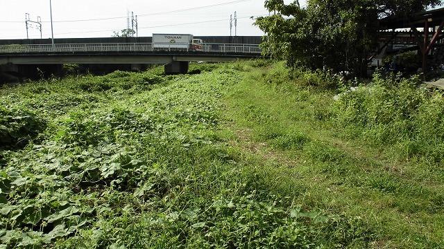 滝川の彼岸花は満開です! 明日はJR東田子の浦駅から歩く「彼岸花ウォーク」へ!_f0141310_07341968.jpg