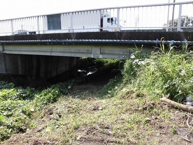 滝川の彼岸花は満開です! 明日はJR東田子の浦駅から歩く「彼岸花ウォーク」へ!_f0141310_07342793.jpg