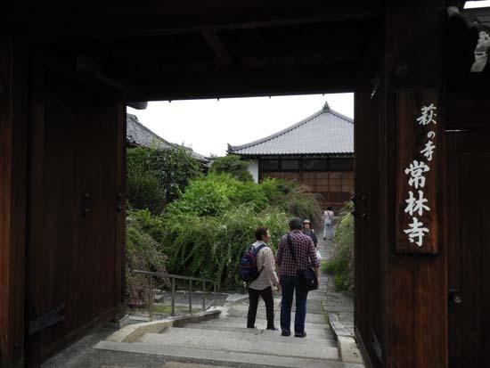 萩の寺 常林寺_e0048413_19051580.jpg