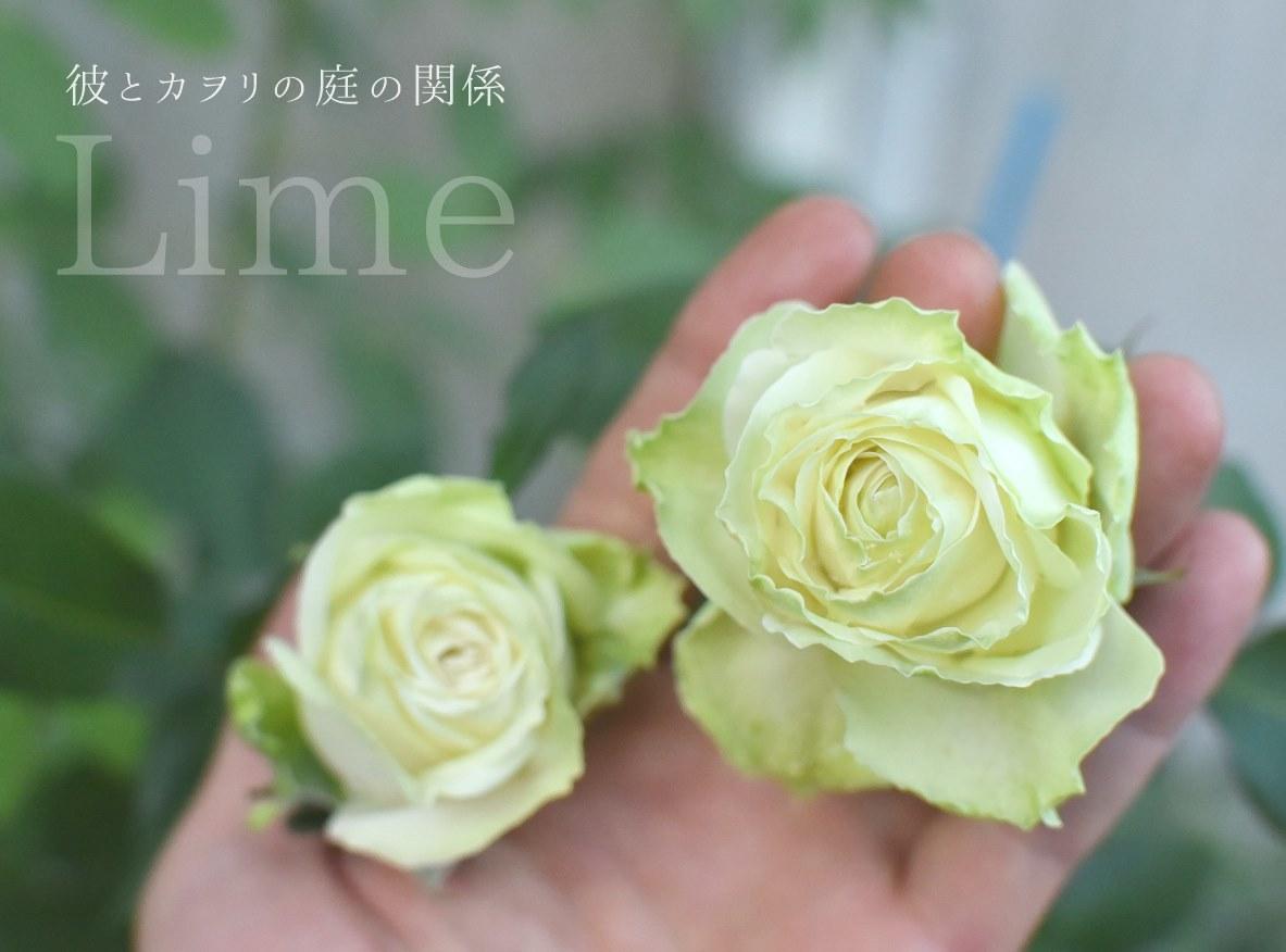c0365716_20085463.jpg