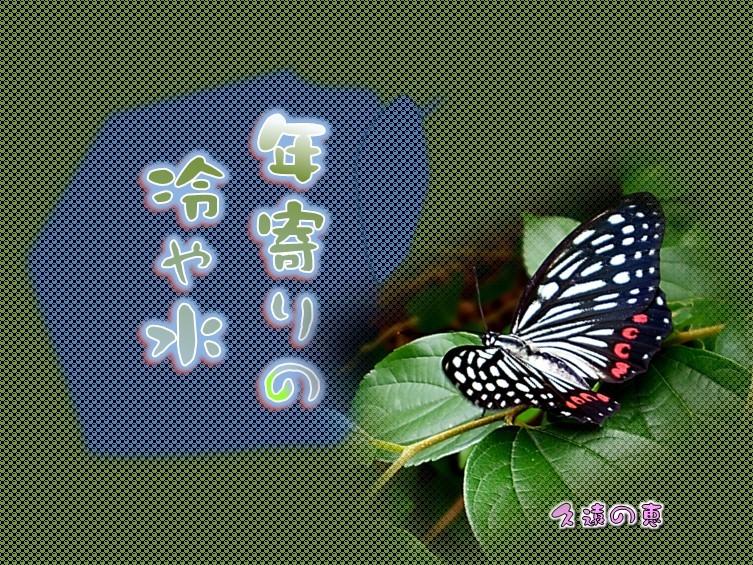 f0214467_09301333.jpg