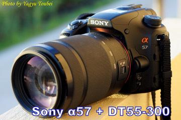 b0132475_20085862.jpg