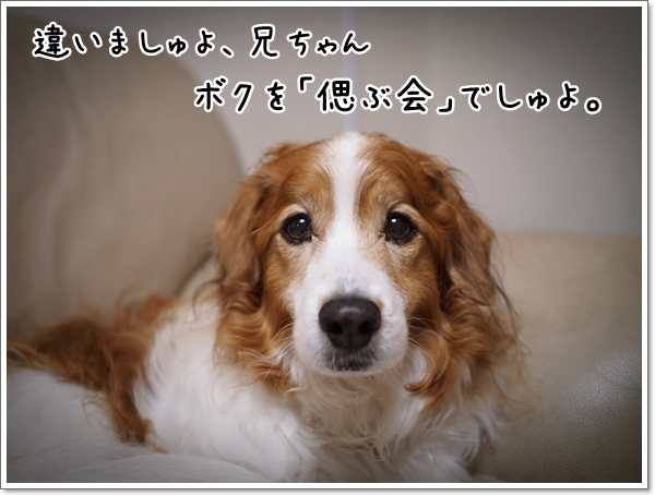 d0013149_00250655.jpg