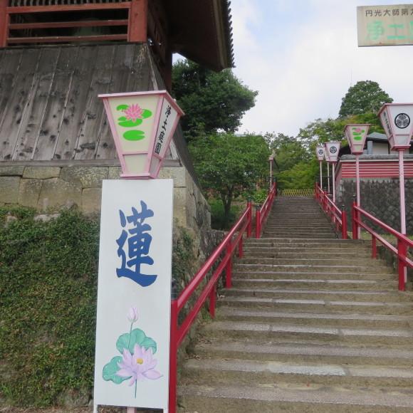 當麻寺と当麻寺とどちらを表記しようかと考えた上変換で先に出てきた方にした 葛城市_c0001670_20075669.jpg