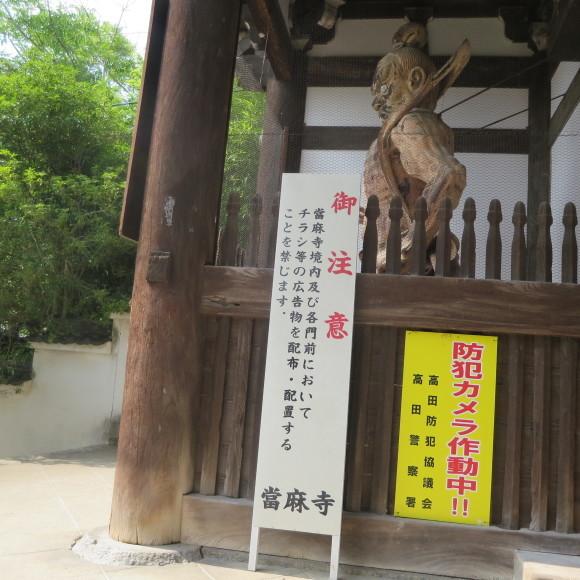 當麻寺と当麻寺とどちらを表記しようかと考えた上変換で先に出てきた方にした 葛城市_c0001670_20152268.jpg