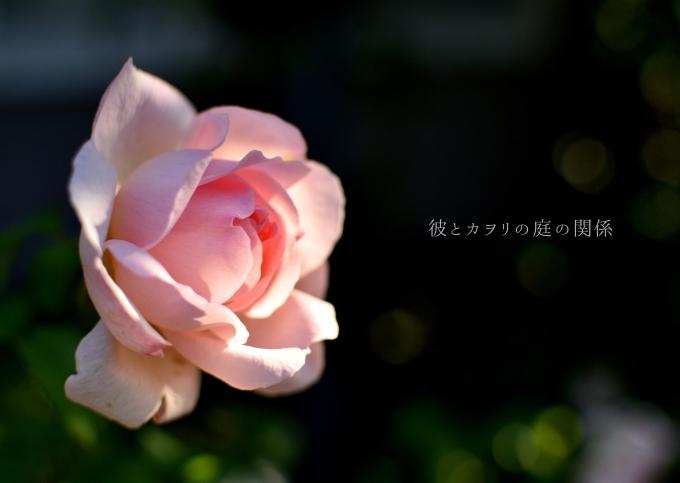 c0365716_17081912.jpg
