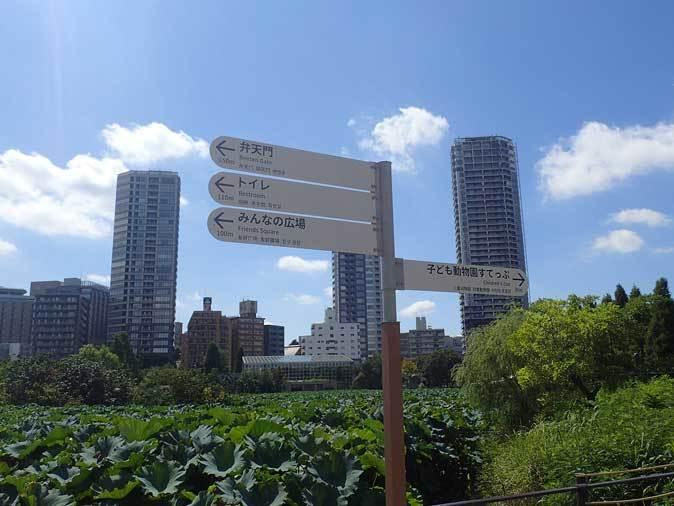 上野動物園:NEW子ども動物園すてっぷ~「すてっぷ館」_b0355317_20594091.jpg