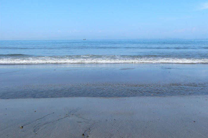 初秋 海原を見に秋谷海岸へ_d0150720_19022996.jpg